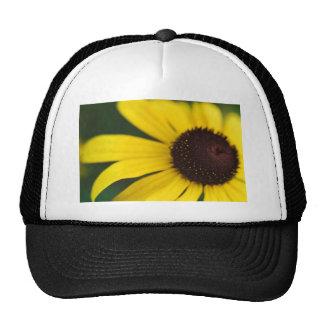 Primer amarillo de la flor gorras de camionero