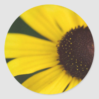 Primer amarillo de la flor pegatina redonda