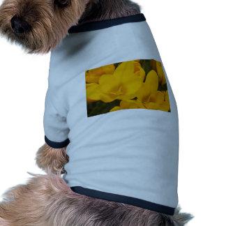 Primer amarillo de las azafranes camiseta de mascota