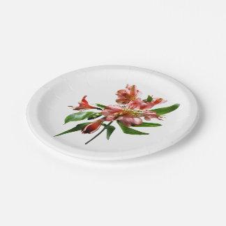 Primer asiático rosado de los lirios platos de papel
