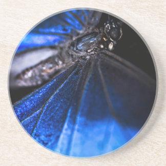 Primer azul de la mariposa de Morpho Posavasos Personalizados