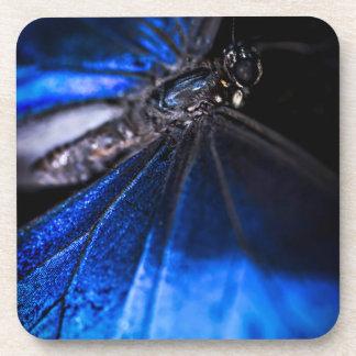 Primer azul de la mariposa de Morpho Posavasos De Bebida