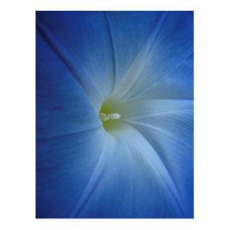 Primer azul divino de la correhuela postal