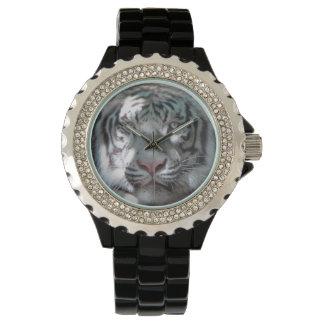 Primer blanco majestuoso del tigre relojes de mano