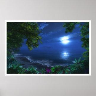Primer claro de luna póster