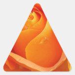 Primer color de rosa anaranjado pegatina trianguladas personalizadas