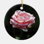 Primer color de rosa rosado adorno redondo de cerámica