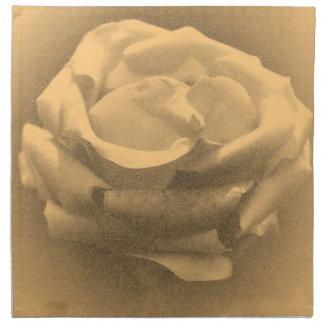 Primer color de rosa rosado del vintage servilletas