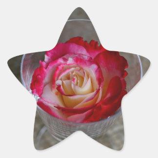 Primer color de rosa rosado en copa de vino pegatina en forma de estrella