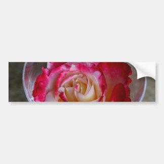 Primer color de rosa rosado en copa de vino pegatina para auto
