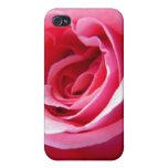 primer color de rosa rosado iPhone 4 cobertura