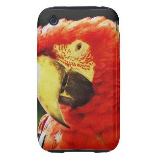 Primer con alas verde del pájaro del loro del Maca iPhone 3 Tough Cobertura