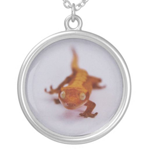 Primer con cresta del Gecko Colgante Redondo