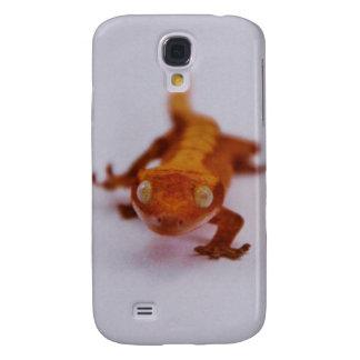 Primer con cresta del Gecko