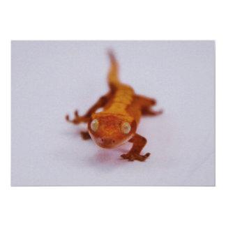 """Primer con cresta del Gecko Invitación 5"""" X 7"""""""