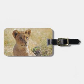 Primer de Cub de león Etiquetas Para Maletas