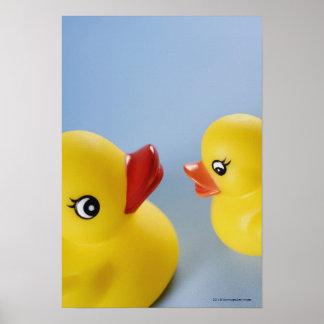 Primer de dos patos de goma póster
