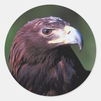 Primer de Eagle de oro Pegatina Redonda