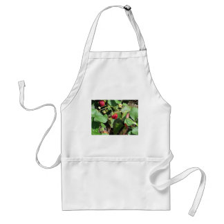 Primer de fresas orgánicas frescas delantal
