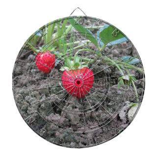 Primer de fresas orgánicas frescas en el Garde