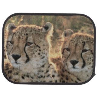 Primer de guepardos alfombrilla de coche