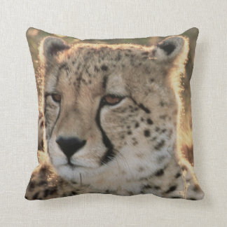 Primer de guepardos cojín