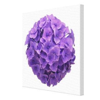 Primer de la bola del Hydrangea Impresión En Lienzo