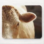 Primer de la cara de la vaca tapetes de raton