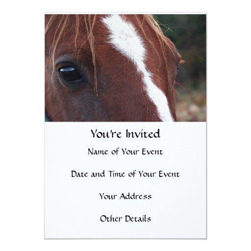 """Primer de la cara del caballo invitación 5"""" x 7"""""""