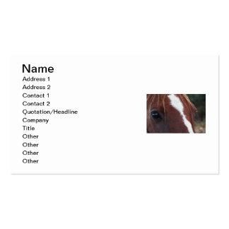 Primer de la cara del caballo tarjetas personales