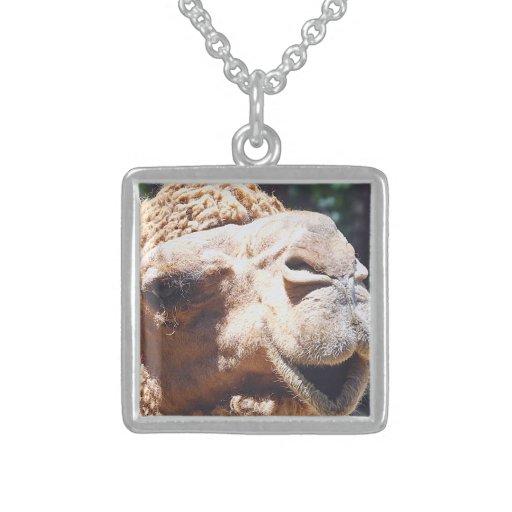 Primer de la cara del camello de la chepa del colgante cuadrado
