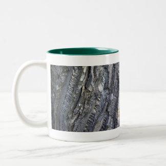 Primer de la corteza gris del tronco de árbol tazas de café
