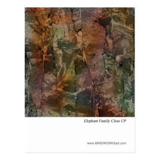 Primer de la familia del elefante tarjeta postal