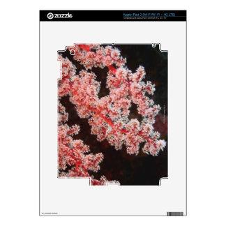Primer de la fan de mar subacuático, Sulawesi del iPad 3 Pegatina Skin