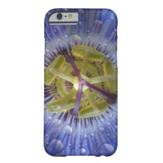 Primer de la flor cubierta de rocio de la pasión. funda barely there iPhone 6