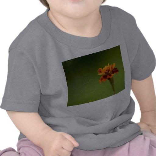 Primer de la flor de la maravilla camisetas