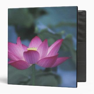 """Primer de la flor de loto roja y de hojas verdes, carpeta 1 1/2"""""""