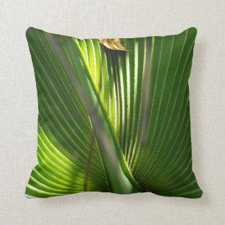 Primer de la foto de la palma enana americana cojín