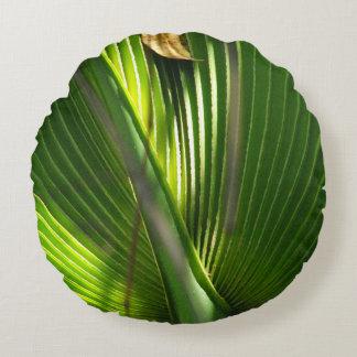 Primer de la foto de la palma enana americana cojín redondo