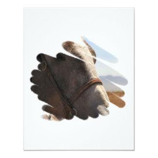 Primer de la foto del caballo invitación 10,8 x 13,9 cm