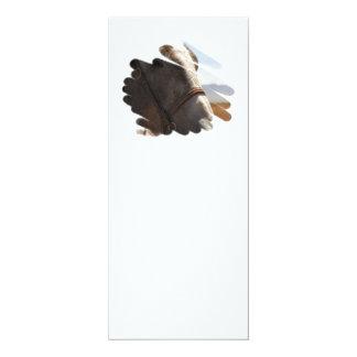 Primer de la foto del caballo invitación 10,1 x 23,5 cm