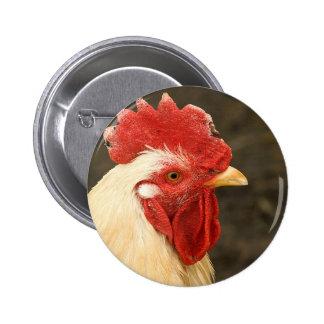 Primer de la gallina pin redondo 5 cm