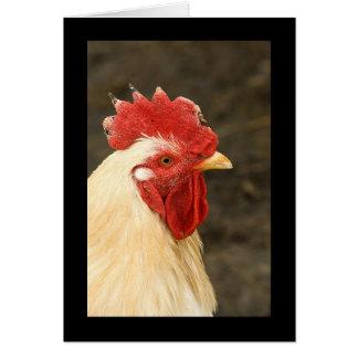 Primer de la gallina tarjeta de felicitación