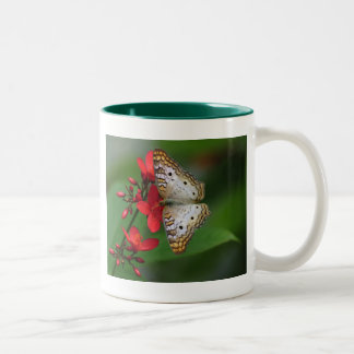 Primer de la mariposa blanca taza de dos tonos