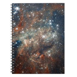 Primer de la nebulosa del Tarantula Libro De Apuntes
