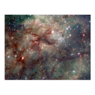 Primer de la nebulosa del Tarantula Tarjetas Postales