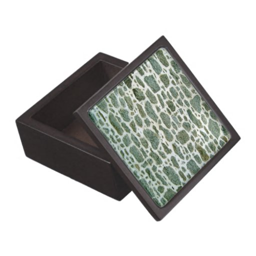 Primer de la pared de piedra verde con el cemento cajas de joyas de calidad