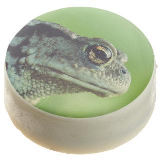 Primer de la rana