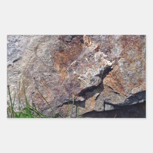 Primer de la roca de Brown en un paisaje herboso Etiqueta