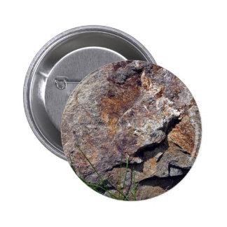 Primer de la roca de Brown en un paisaje herboso Pins
